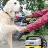شستن حیوانات با دستگاه